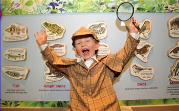 Garden Detectives Exhibition