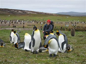 PICK ME UP: Julie Odell with King penguins in the Falklands