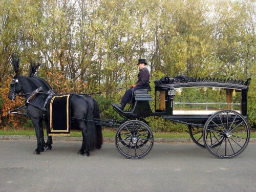 funeral horses for web