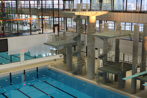Scuba diver dives in to commonwealth pool project deadline news for The heights swimming pool timetable