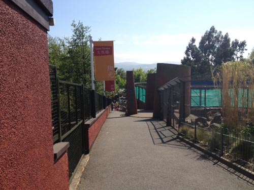 """Edinburgh zoo plans to run """"Zoo nights"""" where people can party close to the animals' enclosures"""