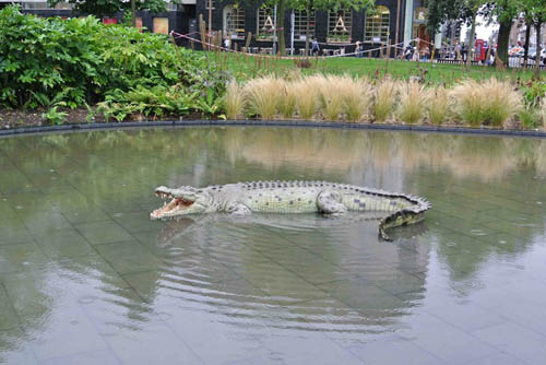 Crocodile owners are hoping the animal will be return by the fearless thieves