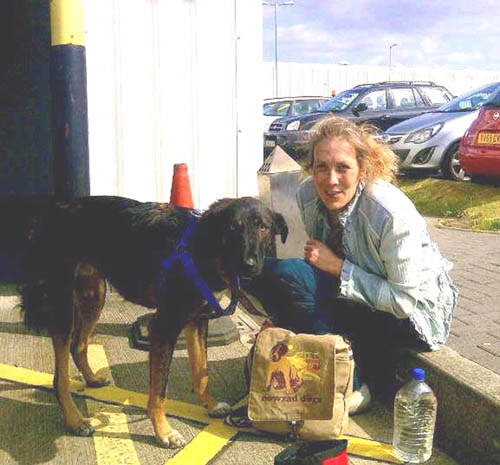 Rambo arriving at Edinburgh airport with Louise, a worker from Nowzad
