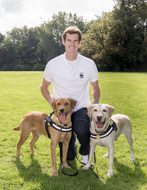 Andy-Murray-008