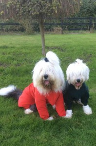 Aslan (left) modelling a onesie with his girlfriend Buffy
