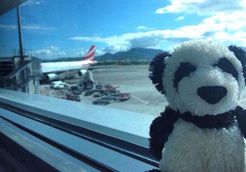 PANDA_AIRPORT_DN11