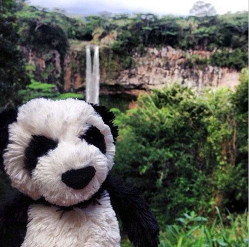 PANDA_CASCADE_DN01