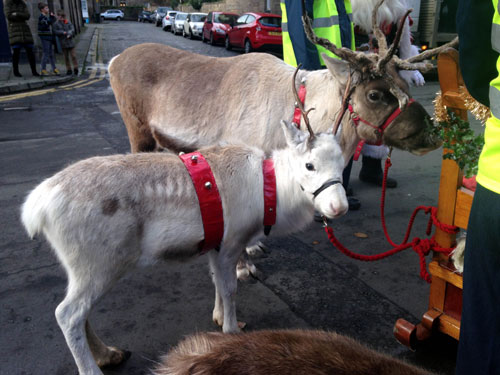 Santa's reindeer were less than impressed with his parking
