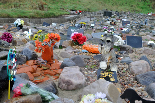 Woman drove 500 miles to bury frozen cat at pet cemetery