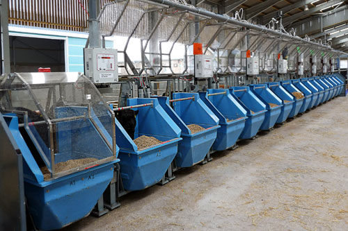 The Hoko feeders allow hundreds of cows to be monitored at the same time