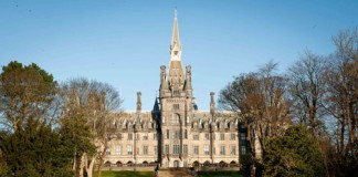 Fettes Collage -Business News
