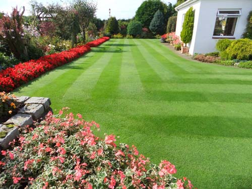 The lawn features stripes at perfect 90 degree angles