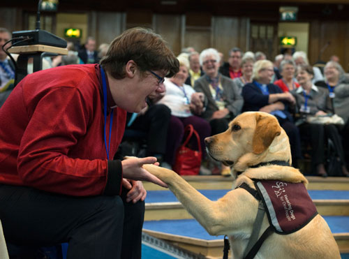 Scott lifts his paw along with other members of the Assembly