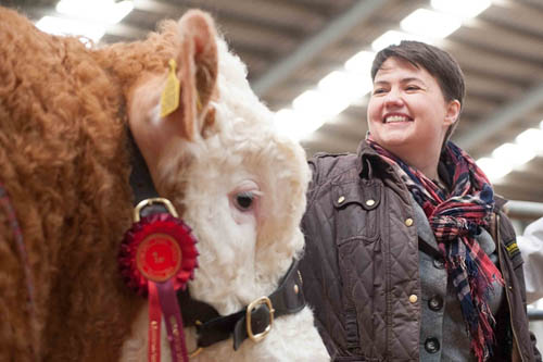 Scottish Conservative leader, Ruth Davidson, and MSP Murdo Fraser, visited Stirling Livestock Auctions Ruth meets a Prize winning bull, Eli. (c) Wullie Marr/DEADLINE NEWS For pic details, contact Wullie Marr........... 07989359845