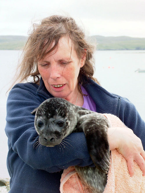 Jan with another seal at the sanctuary