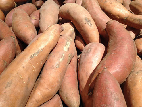 The demand for yams is much higher than farmers can supply