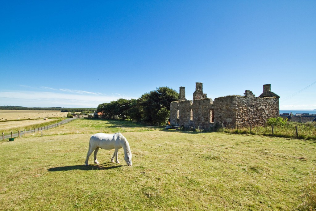 THE RUINS of a centuries-old mansion where a bloody Scottish plot to overthrow the British throne was hatched has come on the market. Grange House near Earlsferry in the beautiful East Neuk of Fife, now stands as a secluded historic ruin - looking out across a local golf course and the Firth of Forth. But 300 years ago the Jacobite rebellion of 1715 was planned by royal usurper James Malcolm within its walls. Malcolm built the home in 1708 - and used it as the base for a bloody attempt to replace King George I of Britain with the exiled monarch James VIII and III. The rebellion failed - and the house was burnt into ruins in the years since - but now any history buff with £150,000 to spare can buy the historic ruins to return them to their former glory.