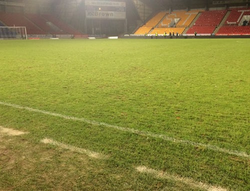 ST Johnstone turf