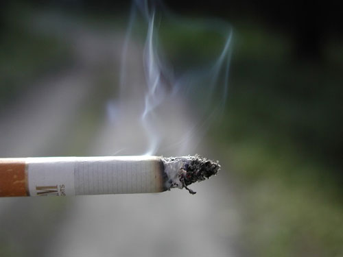 A quit smoking book was one of the most borrowed items