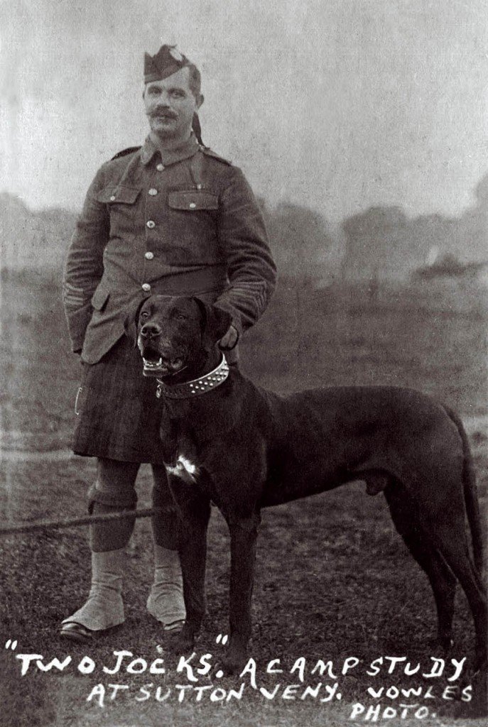Willie with Jock - the battalion's Great Dane