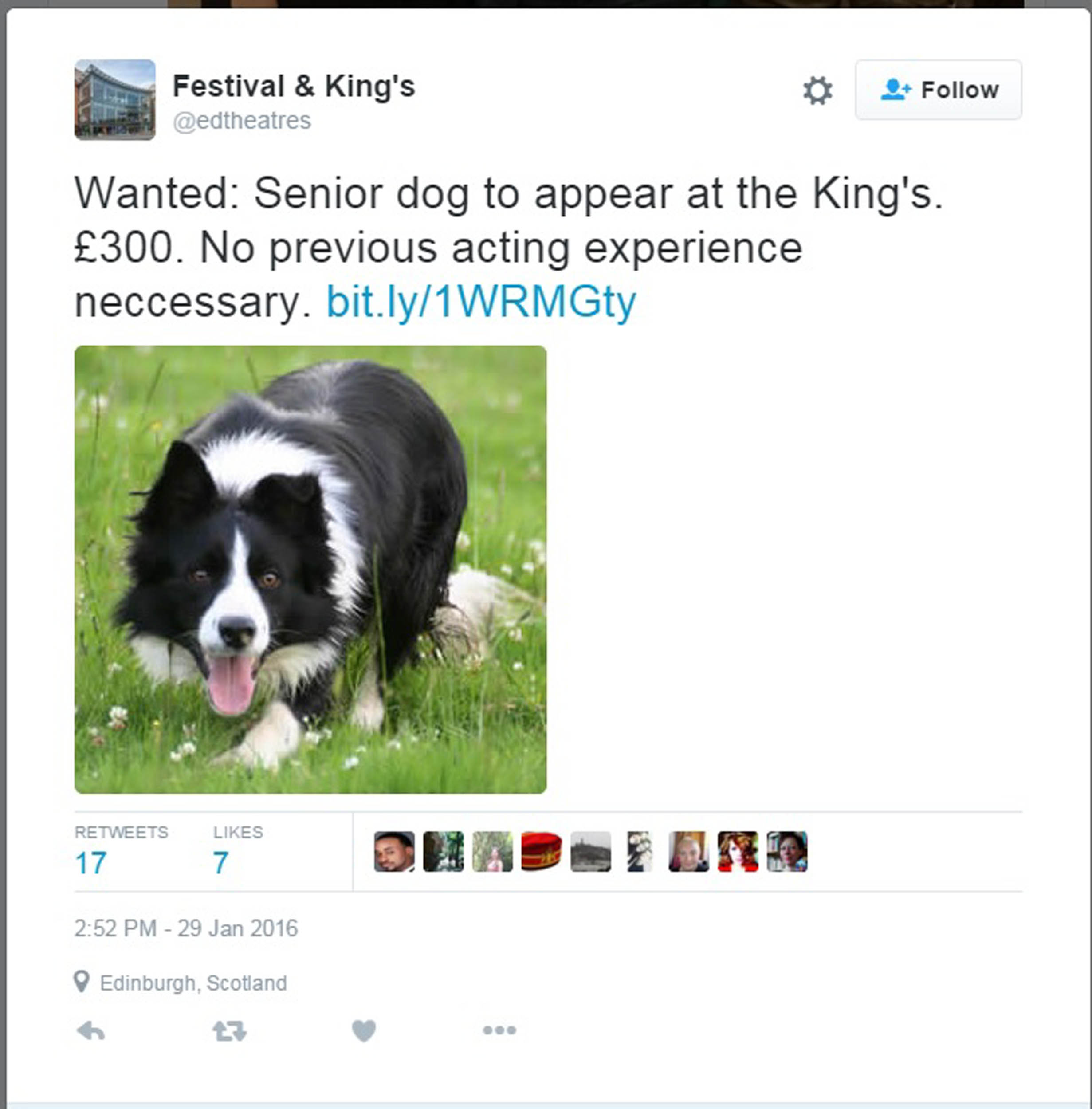 "The King's tweeted an advert for the thespian pooch A SCOTTISH theatre is urgently looking for an old dog to learn a new trick -  acting on a ""salary"" equivalent to £500 an hour. The successful applicant will star alongside veteran actor, and one of the best-known faces on British television, Dudley Sutton.  Sutton, whose credits include Porridge and Lovejoy, is playing the lead in Of Mice and men at the King?s Theatre, Edinburgh. Badger, the elderly pooch that was originally cast in the role, did the inevitable and recently died of old age. So the King?s have placed an urgent ad for a canine stand-in - no experience required - to play ?Candy?s dog? in the stage adaptation of the John Steinbeck novel."