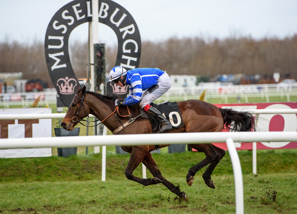 Shrewd and jockey Shane Shortall win at Musselburgh in the Totepool Scottish County Hurdle