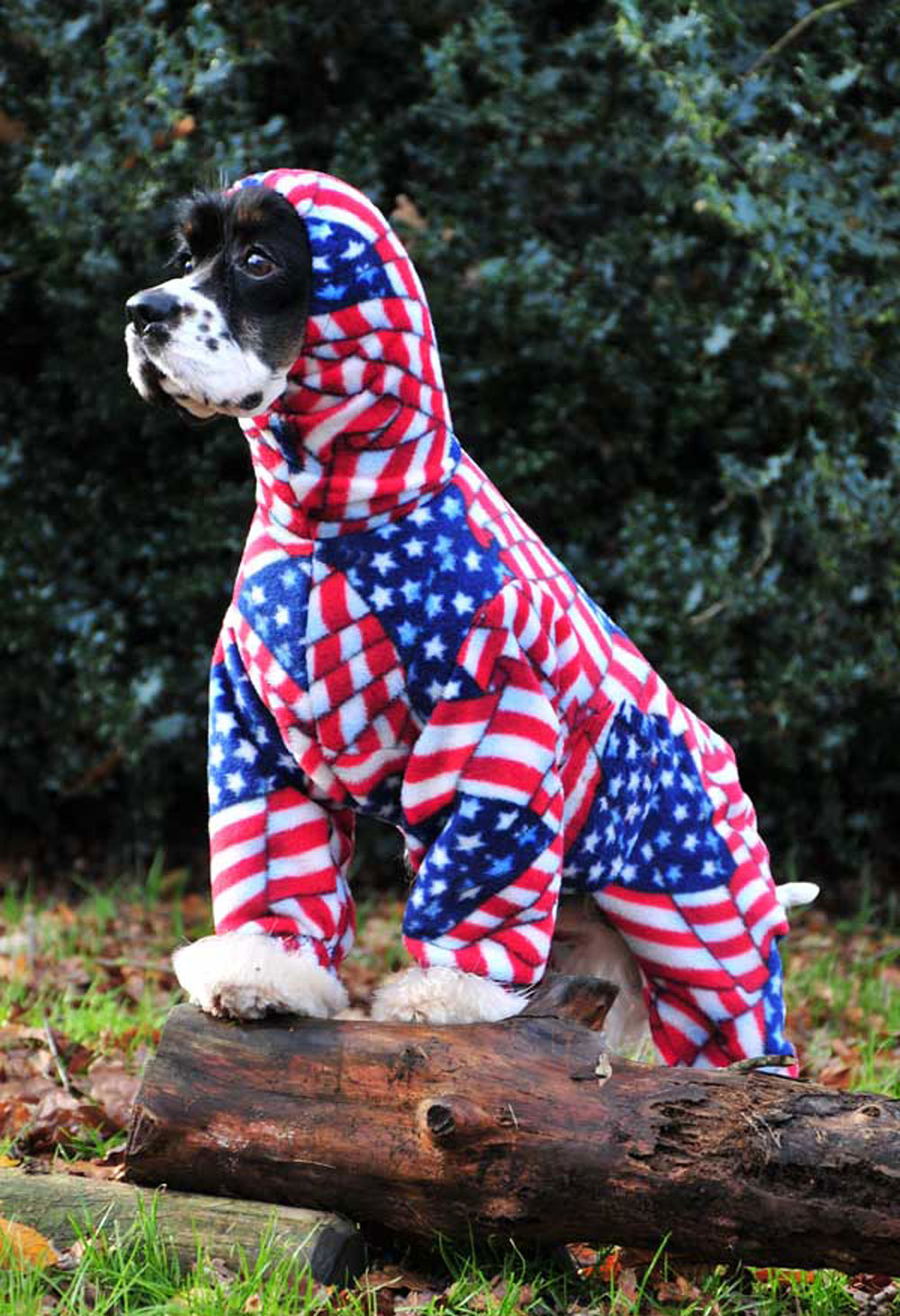 Aileen has had orders from around the world for her dog onesies