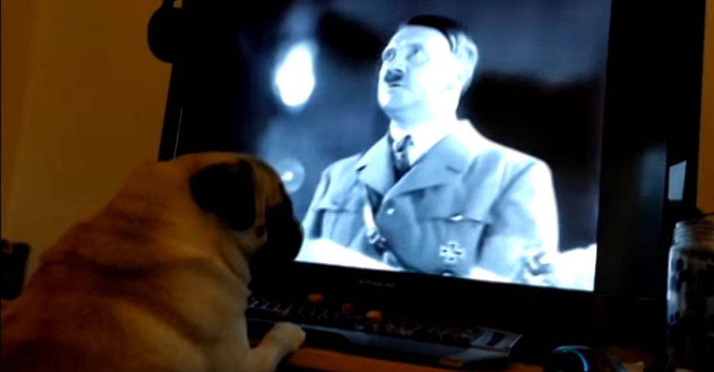 The pooch was also filmed watching Hitler speeches