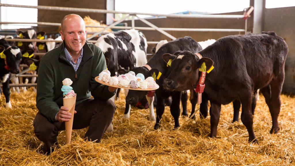 Wednesday 15th June 2015, Aberdeen Scotland.  Mackie's of Scotland 30 flavours of ice cream for the Royal Highland show. (Photo: Ross Johnston/Newsline Media)