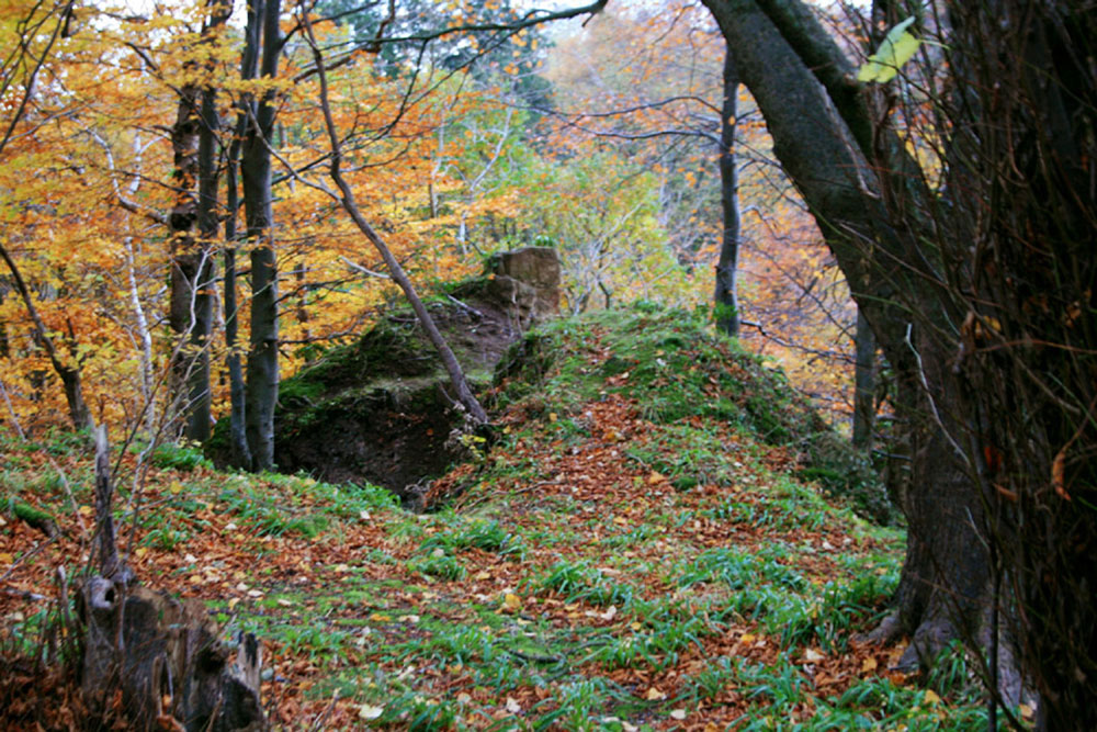 The ruins of the castle (PIC: Stravaiging.org)