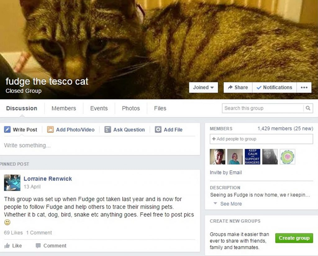 A Facebook page was up for the moggy