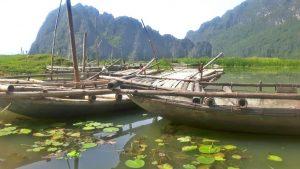 Boats in the Van Long nature reserve, Ninh Binh, Vietnam