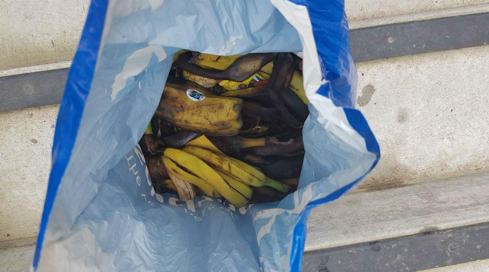 Banana skins in bag
