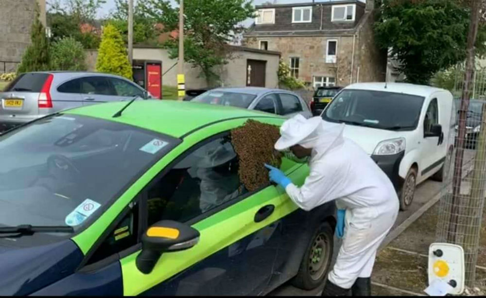 An SSE car parked at the side of the road covered in bees