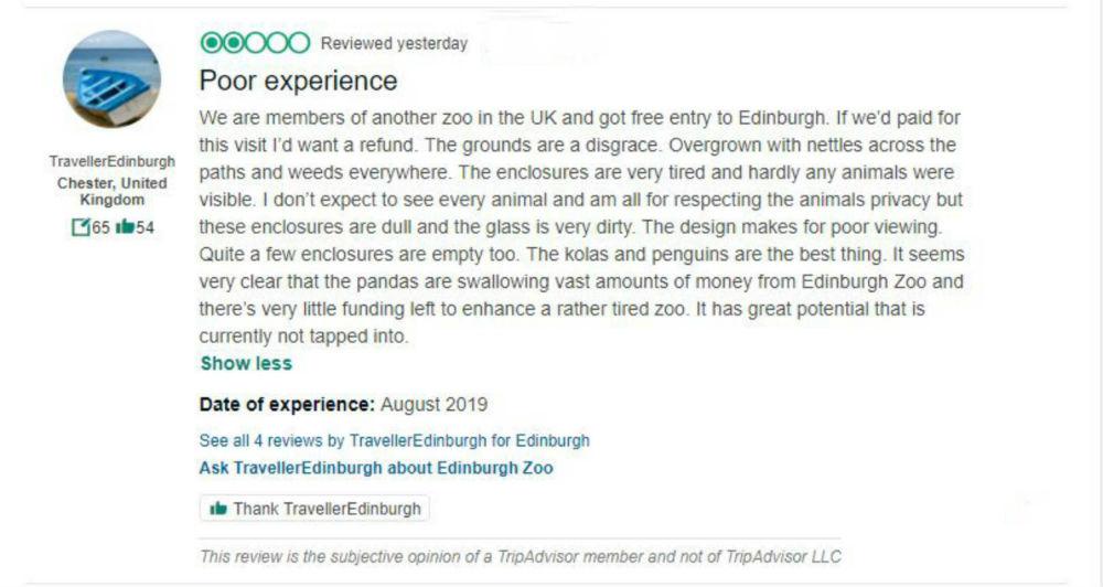 Edinburgh zoo review critic on trip advisor