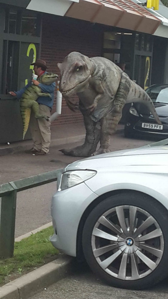 Dinosaur at Drive Thru window