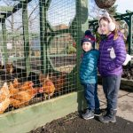 Children with chickens