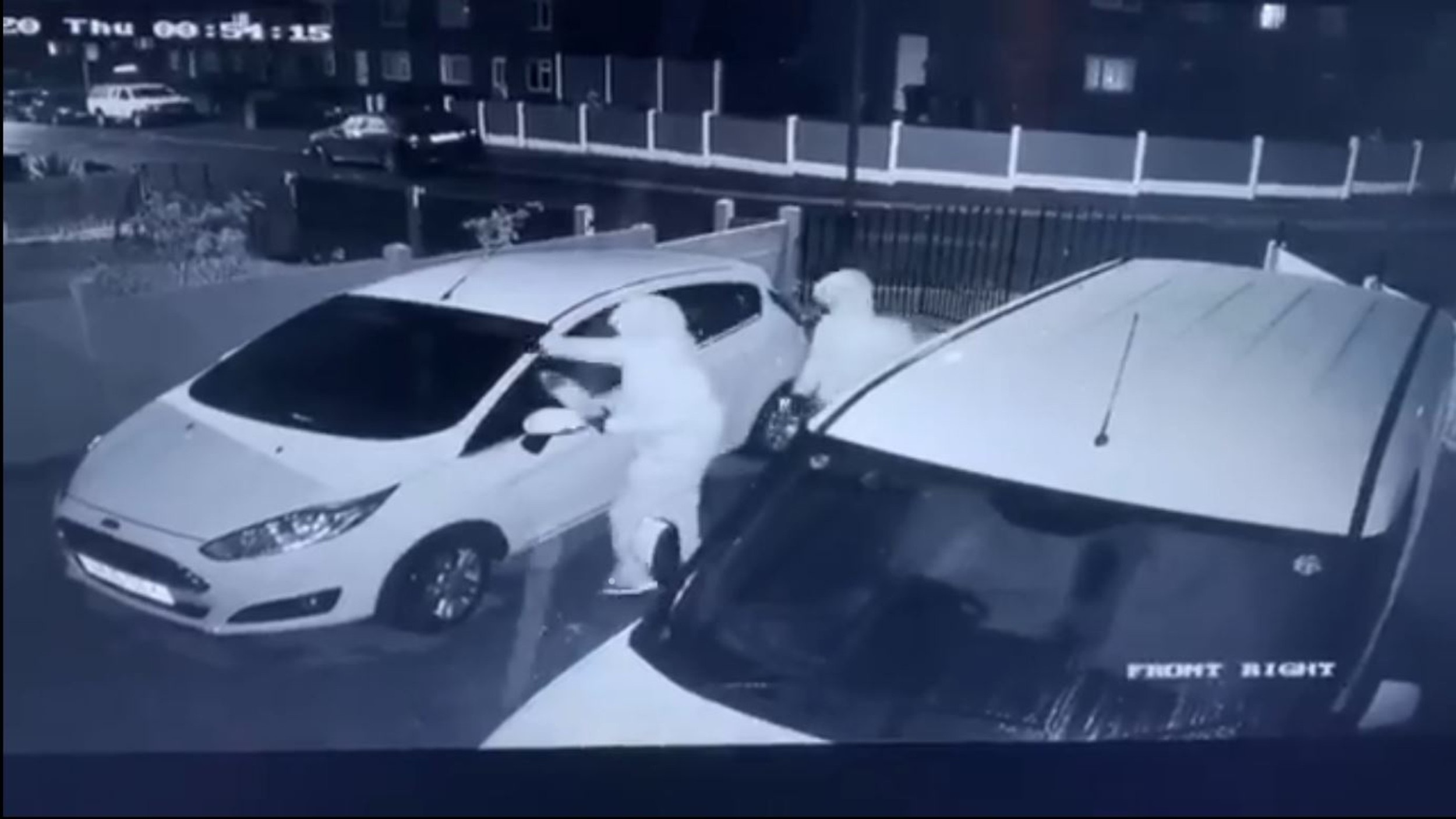 Yobs were captured on CCTV setting  a Ford on fire