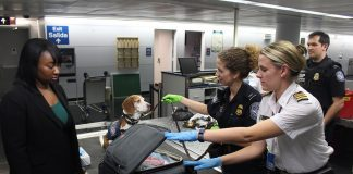 CDC quarantine station with the sniffer dog checking the items of the bag