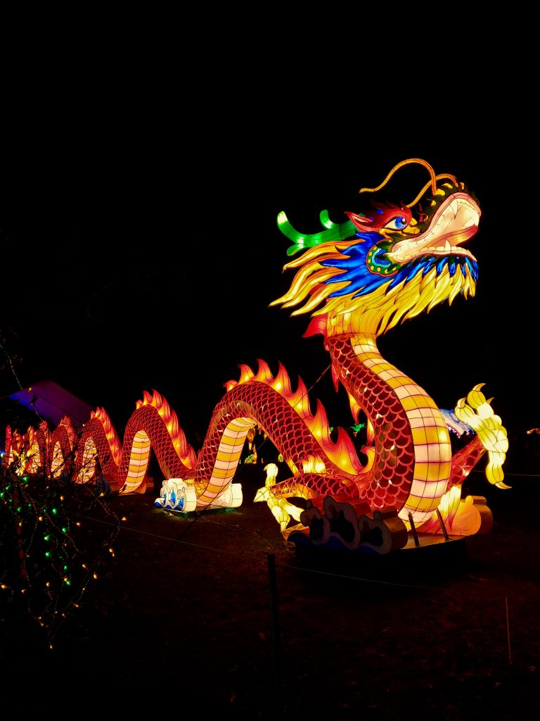 A dragon from the Chinese New Year festival