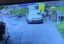 Birmingham car thief