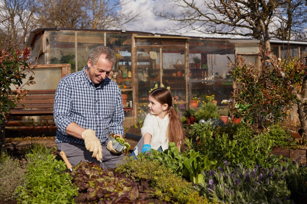 Dobbies will be showing its ongoing support for the Stroke Association, with the partnership launching during National Allotments Week.- Business News Scotland