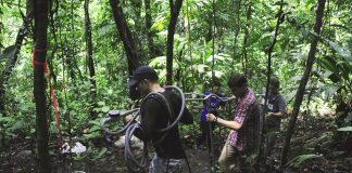 Harmful emissions to be released from tropical soils if climate change continues on current path according to research