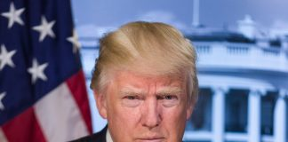 Dr Israel Figa explains why Donald Trump is good for the US economy