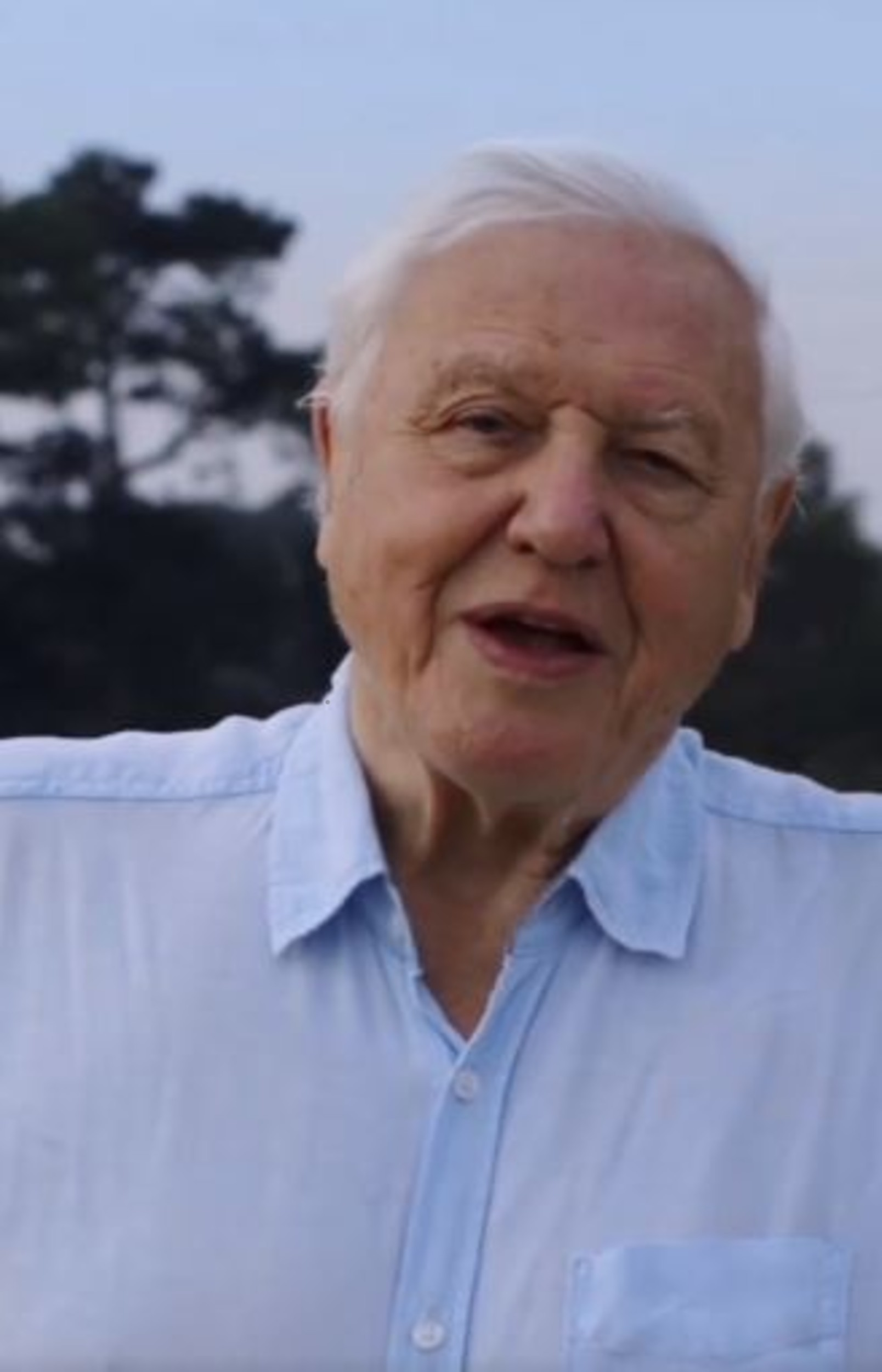 David Attenborough-Consumer News