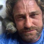 "Gerard Butler has dubbed himself the ""animal whisperer"""