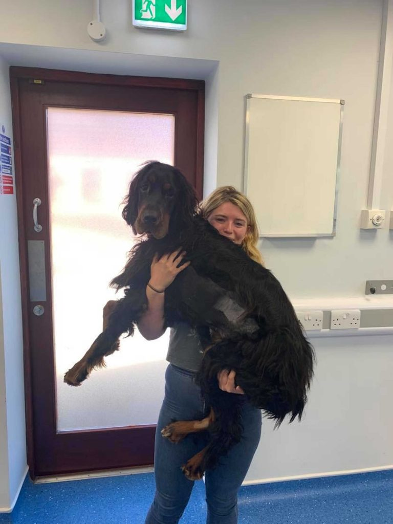 Bewley being held by Abi after her surgery to save her from the rat poison
