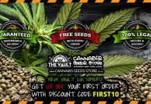 High quality discount cannabis seeds to buy