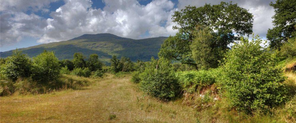 Scottish countryside- Scottish News