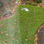 A pair of trousers lying on some grass - Consumer News UK